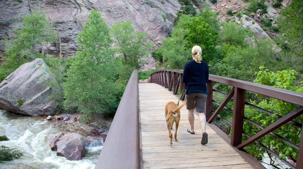 Eldorado Canyon State Park featuring a bridge and hiking or walking