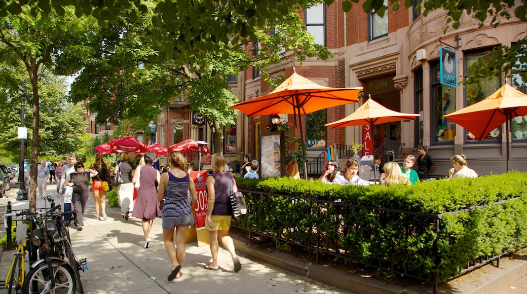 Massachusetts showing street scenes, cafe lifestyle and a city