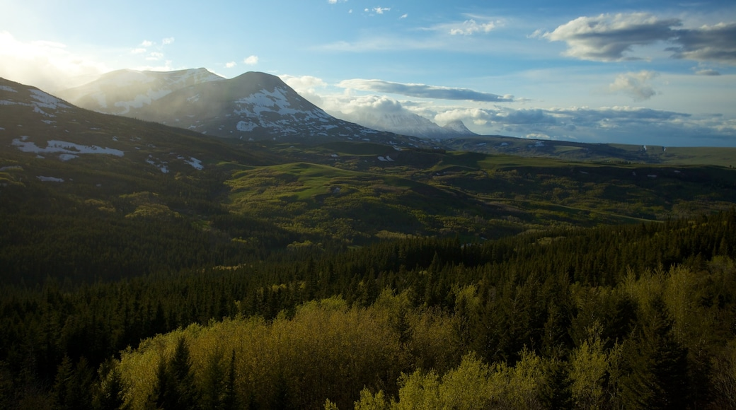Western Montana showing landscape views and tranquil scenes