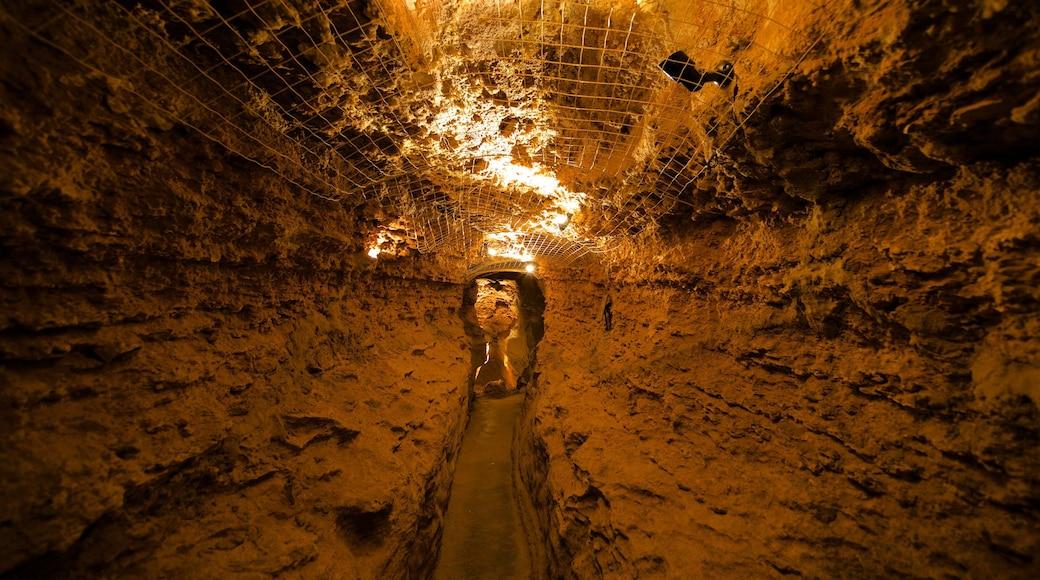 Cave of the Winds welches beinhaltet Innenansichten und Höhlen