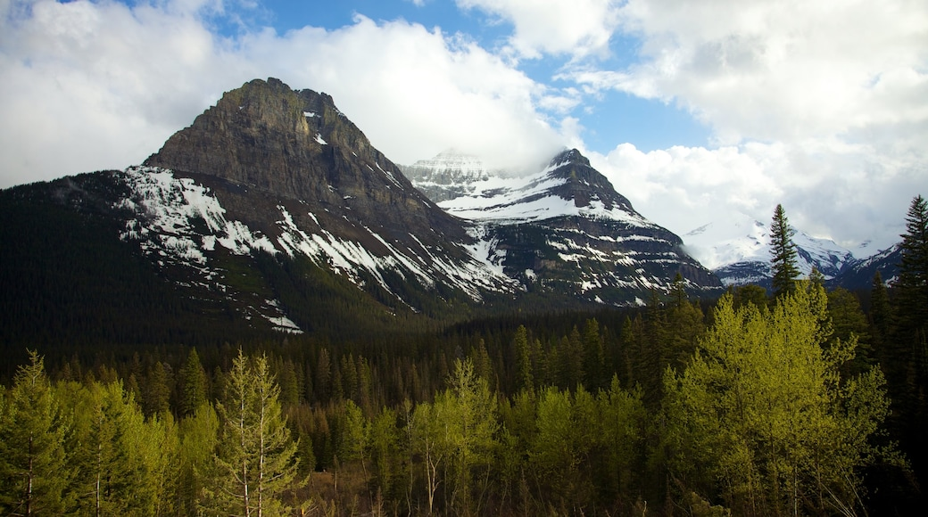 Glacier National Park which includes mountains