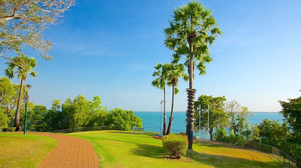 Bicentennial Park showing a park and tropical scenes