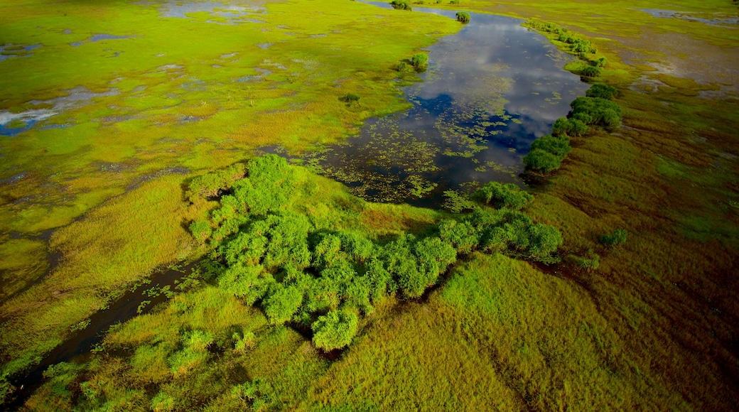 Kakadu National Park which includes wetlands