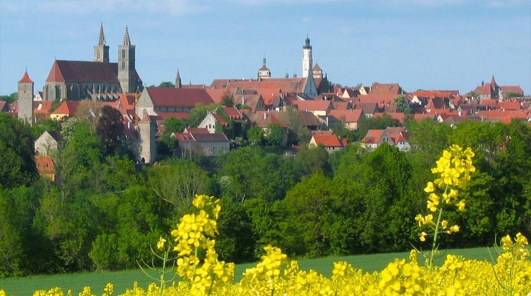 陶伯河上游羅騰堡 呈现出 房屋, 花朵 和 城市
