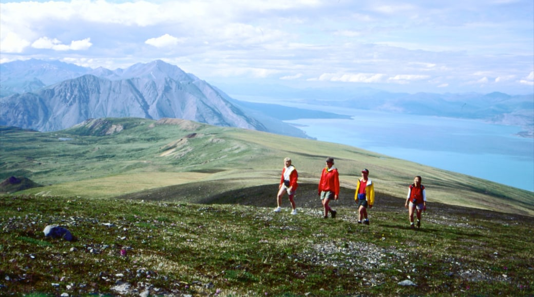 Yukon mit einem Wandern oder Spazieren sowie kleine Menschengruppe