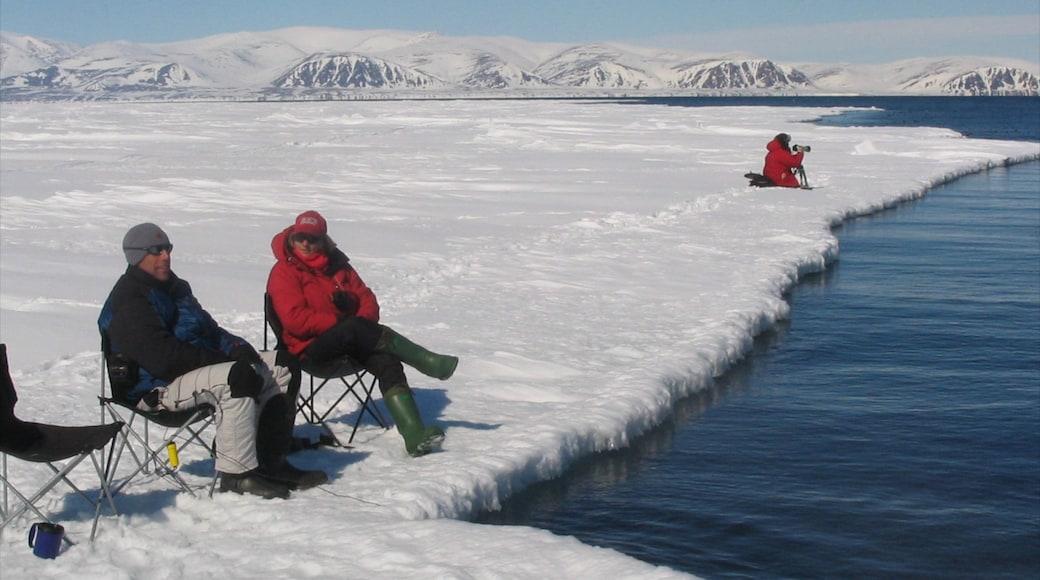 Nunavut ofreciendo nieve y vistas generales de la costa