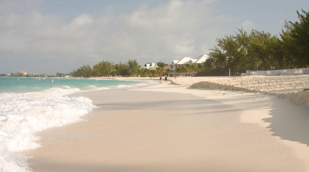 Grand Cayman featuring a sandy beach