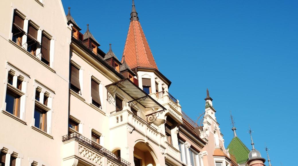 Bolzano caratteristiche di architettura d\'epoca e castello o palazzo
