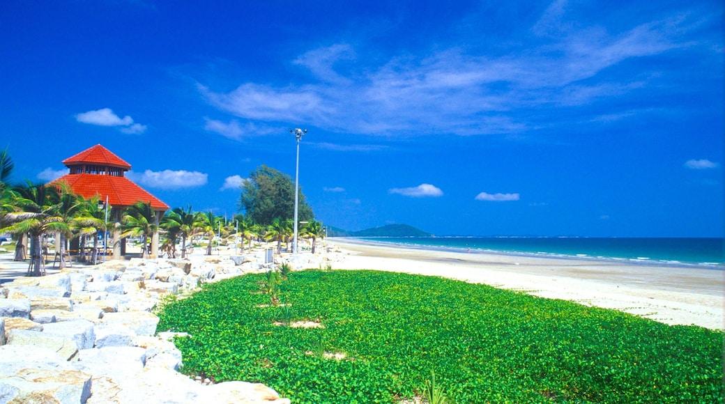 Rayong welches beinhaltet tropische Szenerien, Küstenort und Strand