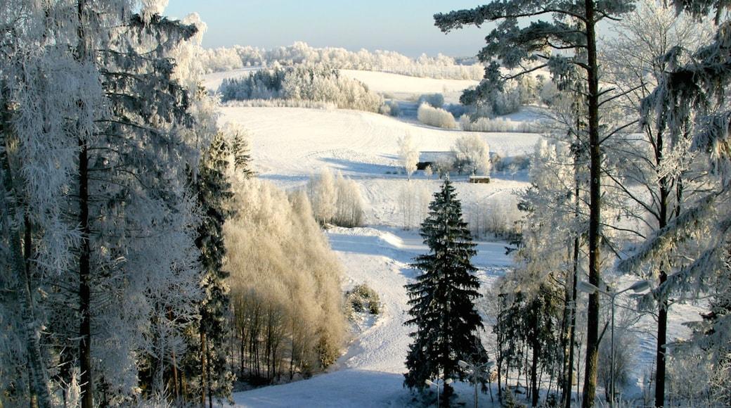 Latvia featuring snow