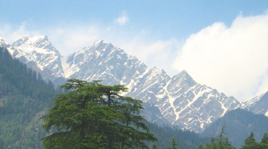 Manali featuring mountains and snow