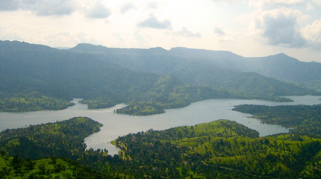 Mahabaleshwar which includes forest scenes and a lake or waterhole
