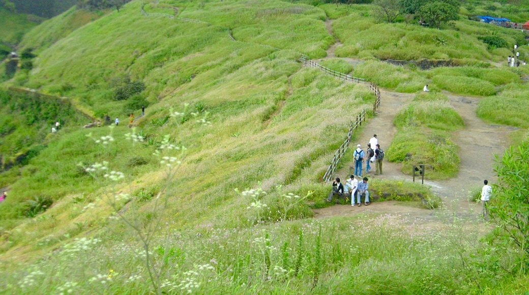 Lonavala featuring hiking or walking and tranquil scenes