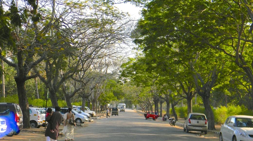Mysore which includes street scenes