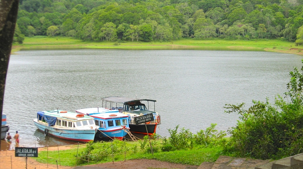 Thekkady showing a lake or waterhole
