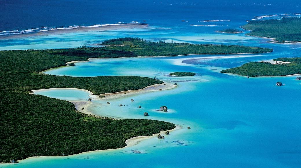 New Caledonia featuring general coastal views