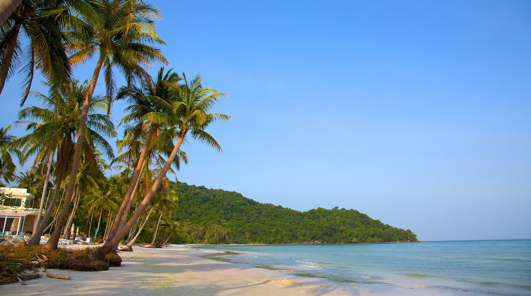 Vietnam featuring tropical scenes and a sandy beach