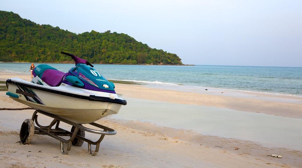 Vietnam showing a sandy beach