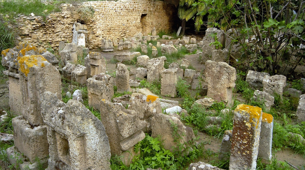 Tunisien presenterar ruiner