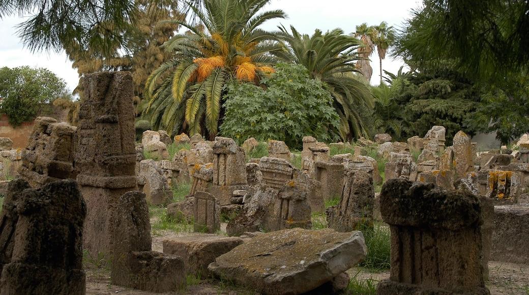 Tunisien som visar ruiner