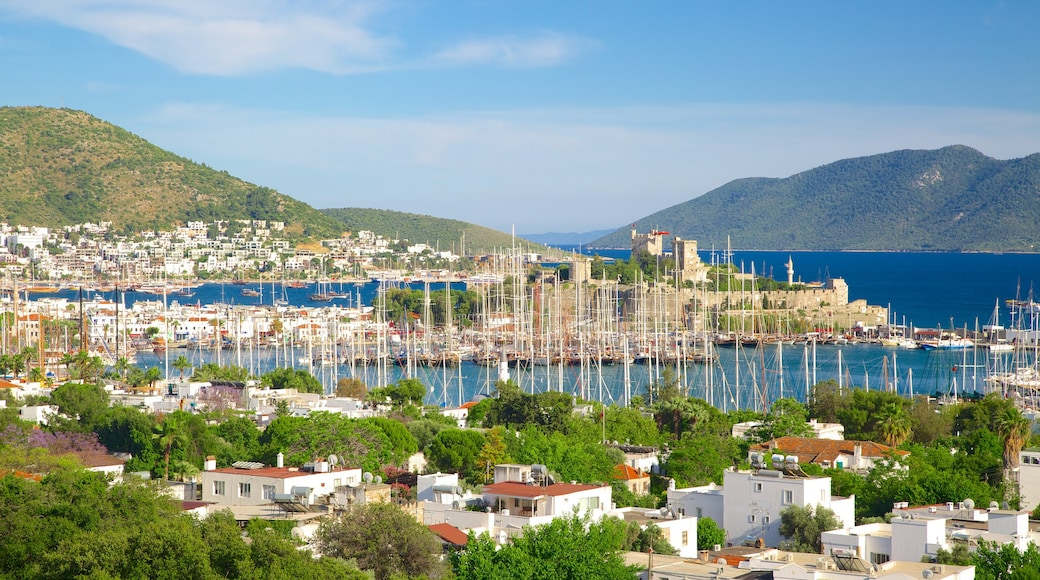 Bodrum showing a coastal town and a marina