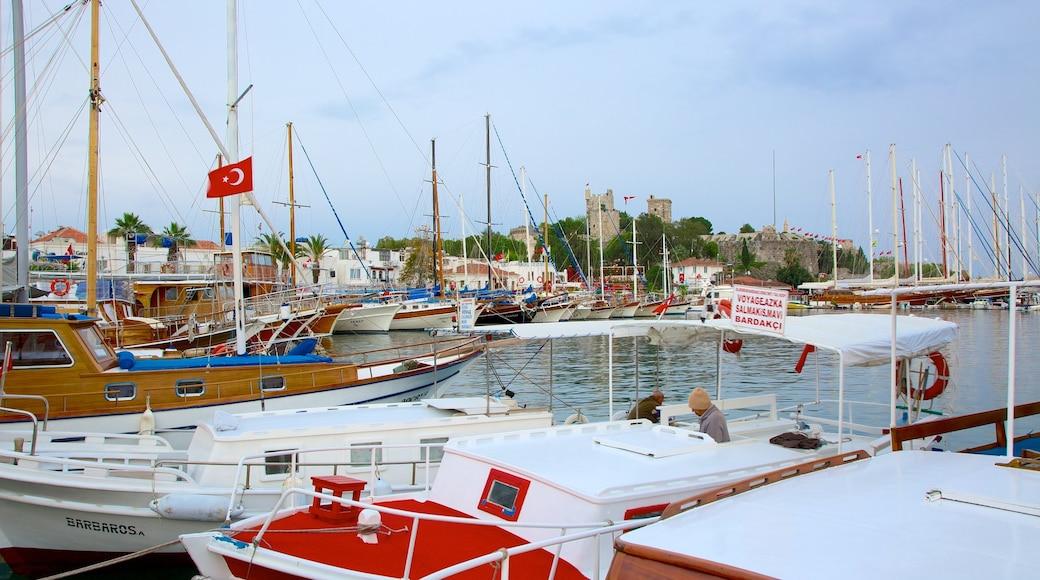 Bodrum featuring a marina
