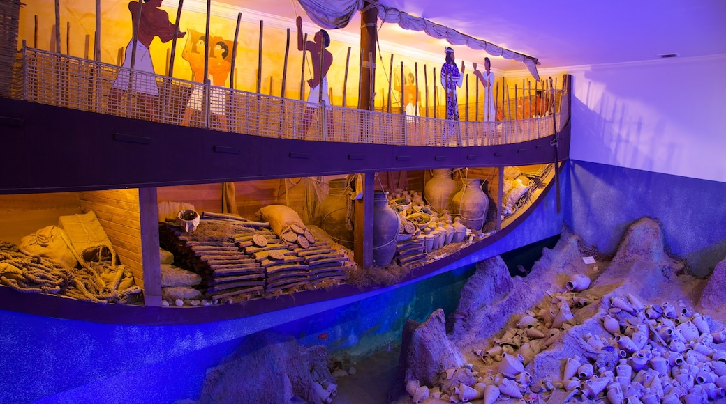 Museum of Underwater Archaeology showing art and interior views