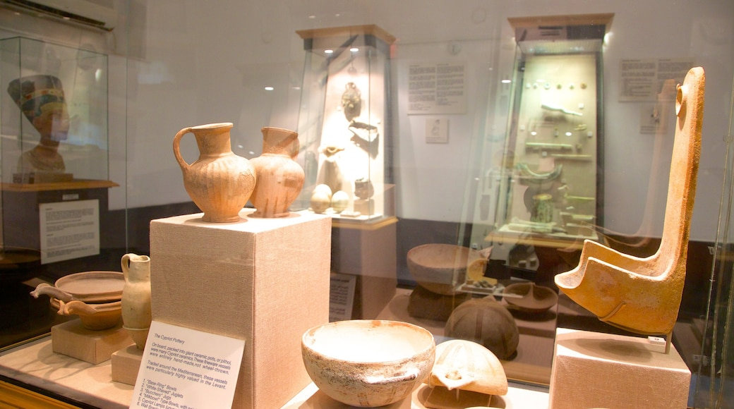Museum of Underwater Archaeology featuring interior views