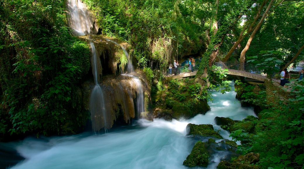 Antalya which includes a garden, forests and a waterfall