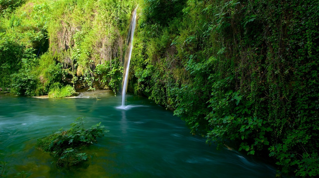 Antalya which includes a waterfall, landscape views and rainforest