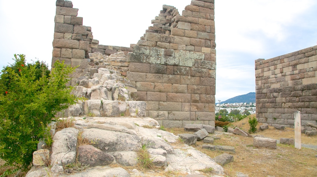 Myndos Gate featuring building ruins