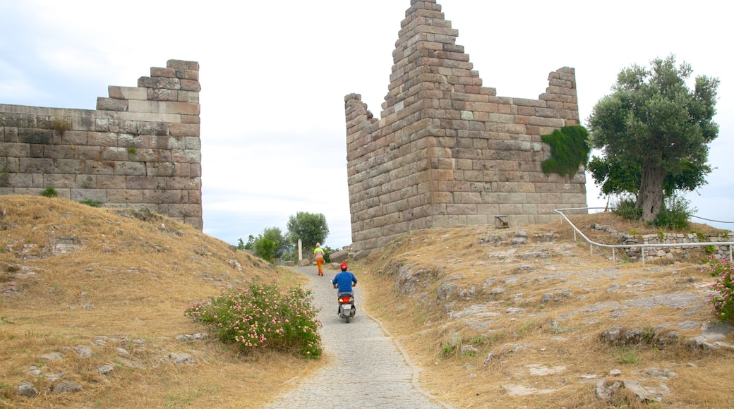 Myndos Gate which includes a ruin