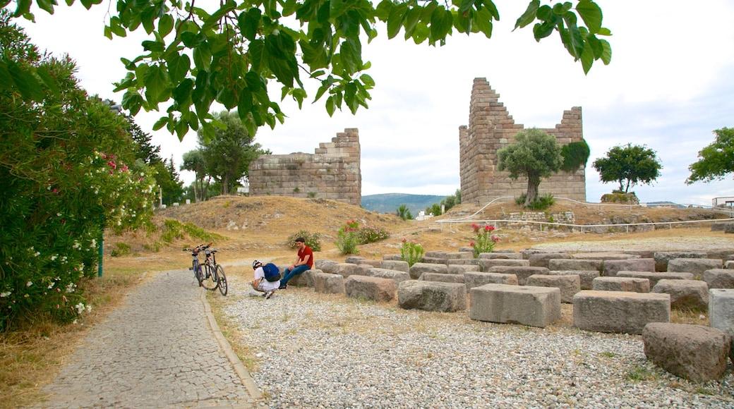 Myndos Gate showing building ruins