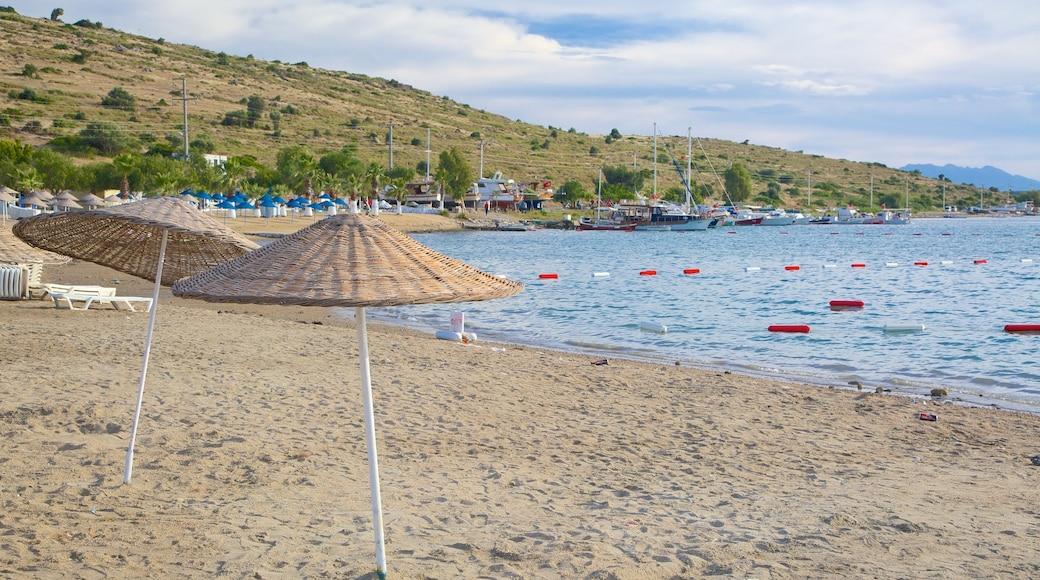 Bardakci Beach which includes a sandy beach