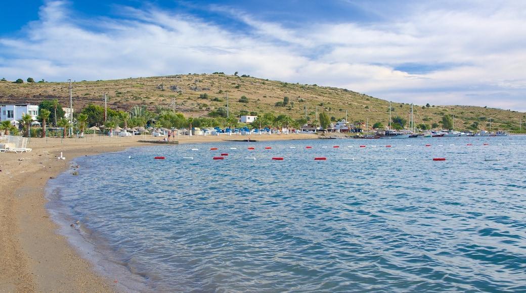 Bardakci Beach featuring a sandy beach and general coastal views