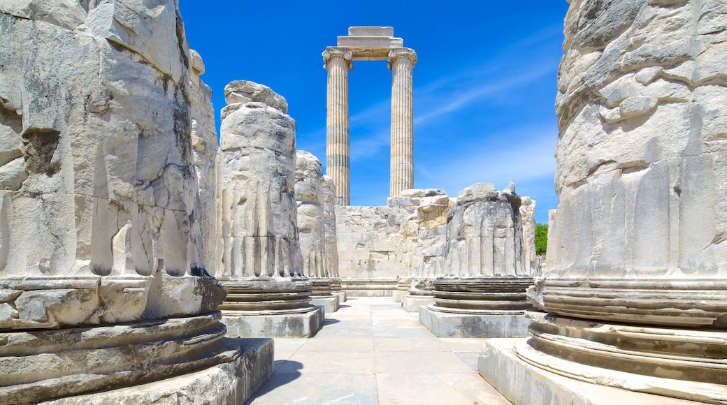 Apollo och Atenas tempel som inkluderar ruiner