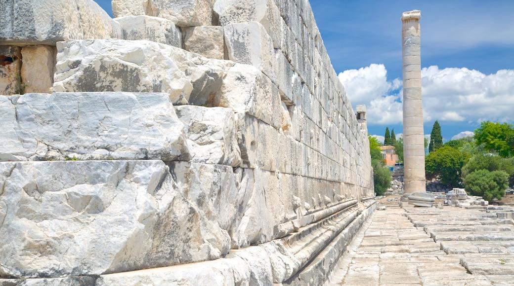 Apollo och Atenas tempel presenterar en ruin