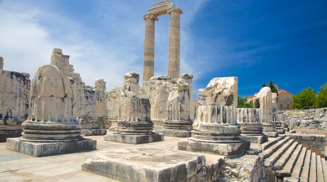 Apollo och Atenas tempel som visar ruiner