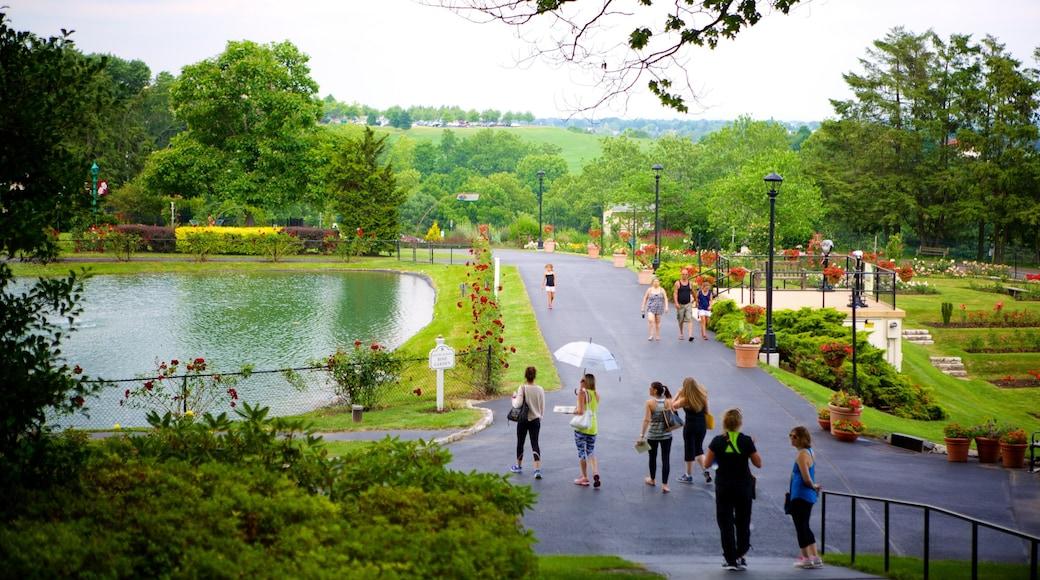 Hershey Gardens caracterizando um parque assim como um pequeno grupo de pessoas