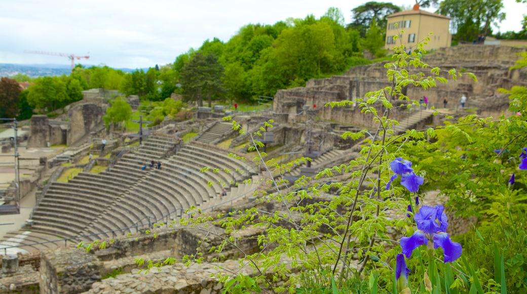 富維耶古羅馬劇場 设有 遺址