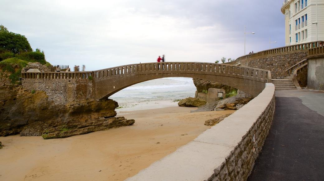 Old Harbor che include spiaggia e ponte