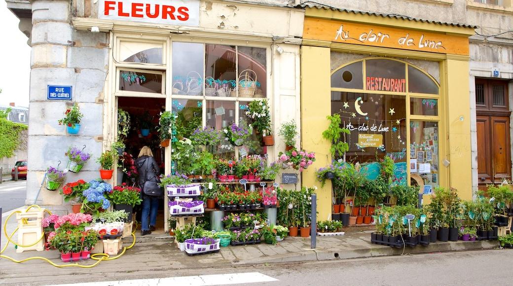 Grenoble mit einem Straßenszenen, Einkaufen und Blumen