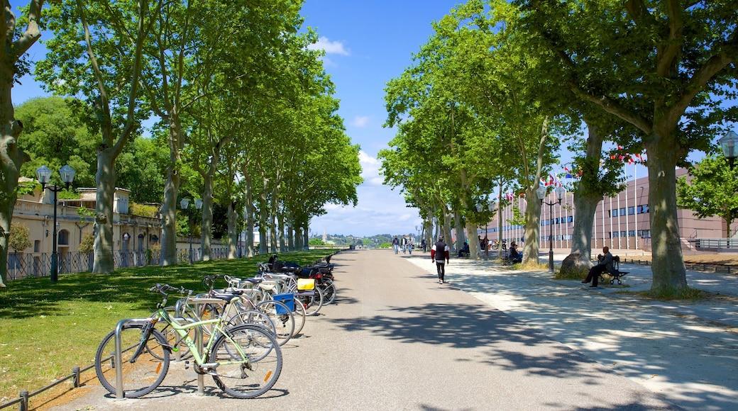Montpellier mettant en vedette scènes de rue