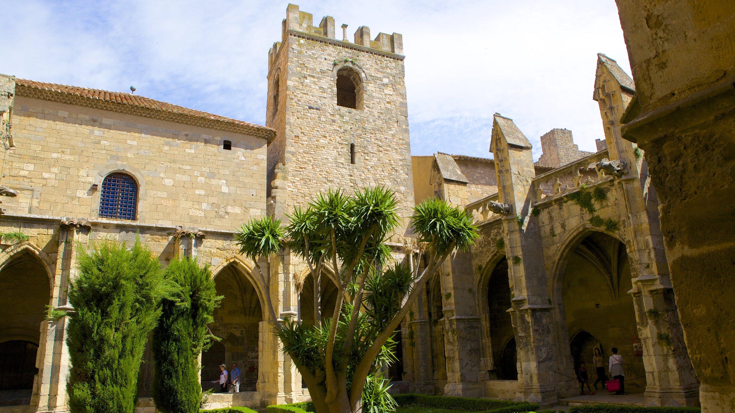 Katedra w Narbonne, Narbona, Aude (department), Francja