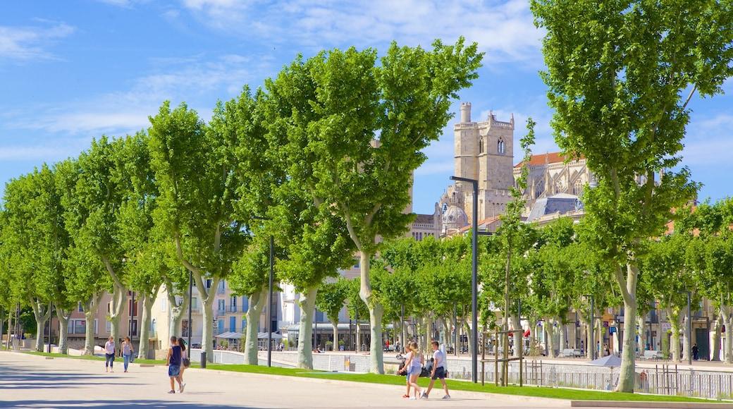 Narbonne qui includes scènes de rue