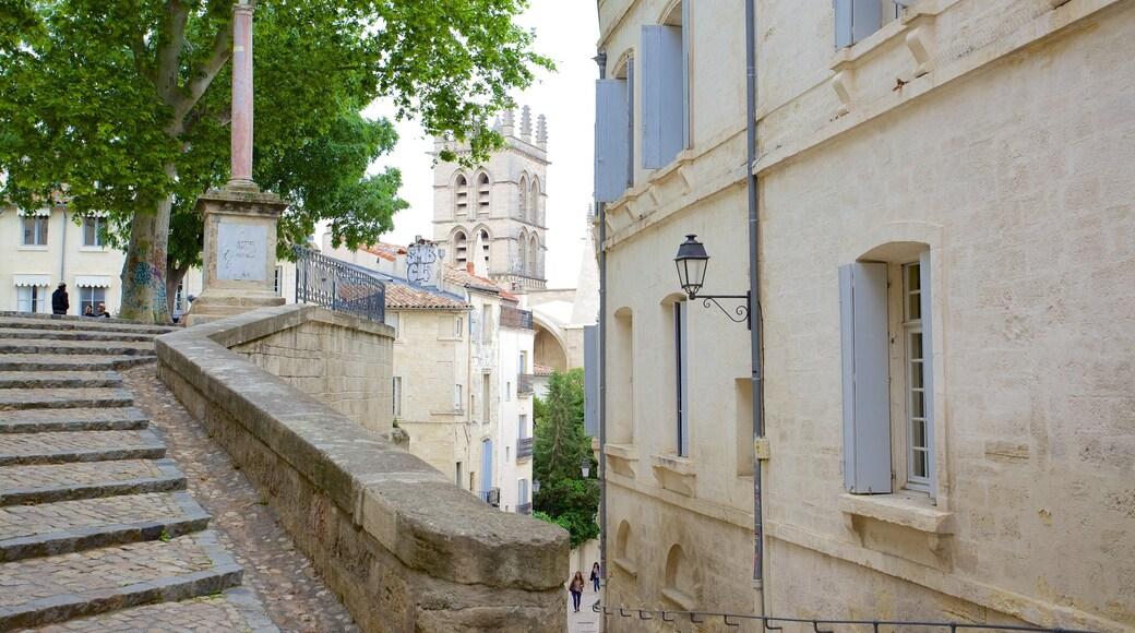 Kathedrale von Montpellier welches beinhaltet Straßenszenen