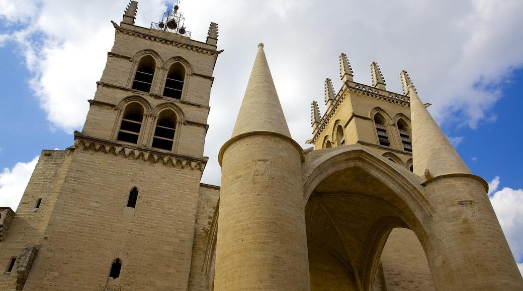 Kathedrale von Montpellier das einen historische Architektur und Kirche oder Kathedrale