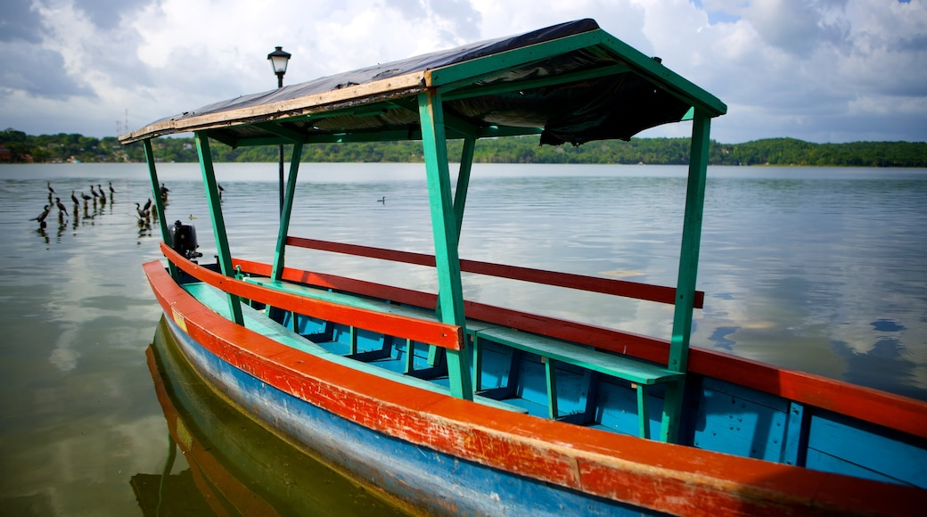 Flores which includes boating and general coastal views