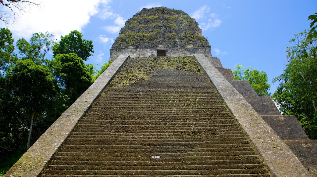 Tikal which includes heritage elements and building ruins