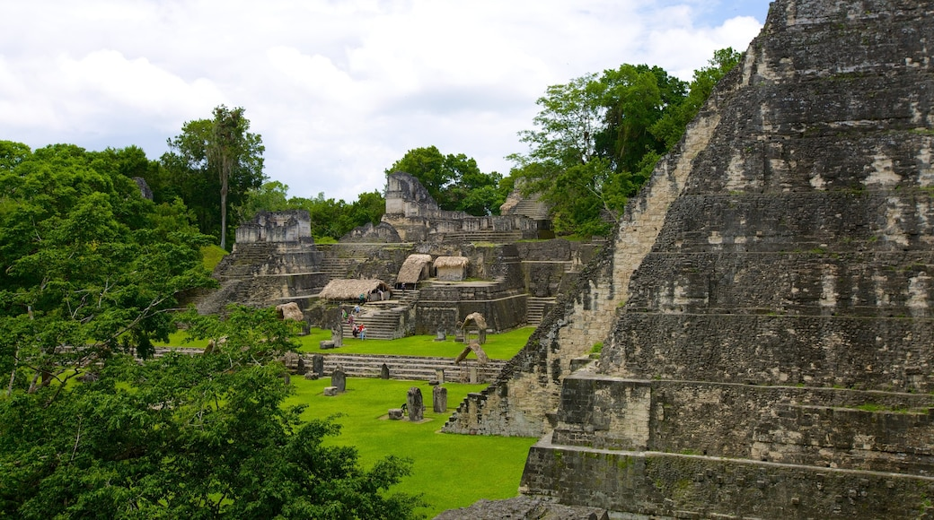Tikal showing a temple or place of worship, a ruin and heritage architecture